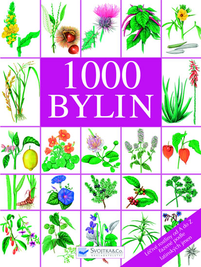 1000 BYLIN